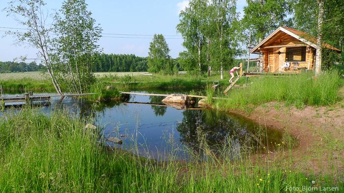 Sommar vid dammen