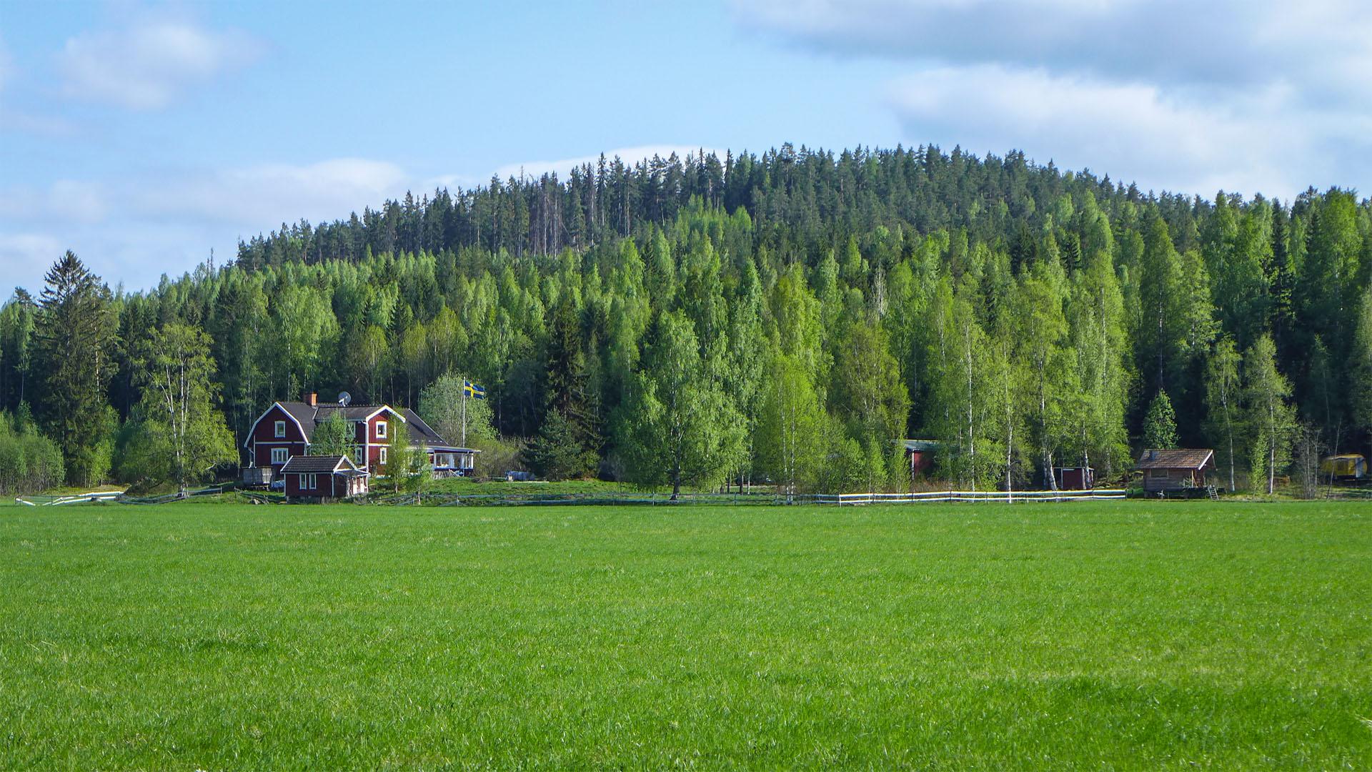 SensiNet AB, Mårtensgård Östanberget