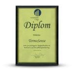 TermoSense - Venture Cup-diplom